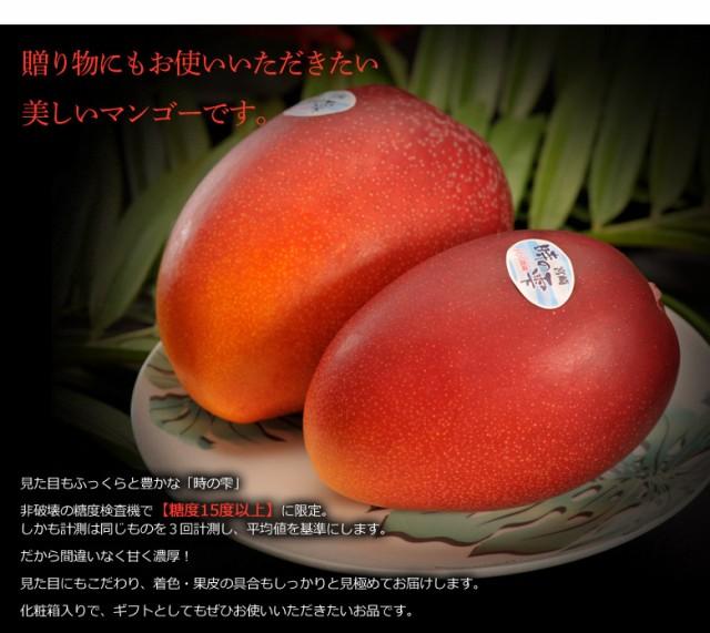 ≪送料無料≫宮崎産完熟マンゴー『時の雫』2Lサイズ(1玉350g~449g) 2玉 化粧箱入 ※常温 ◯