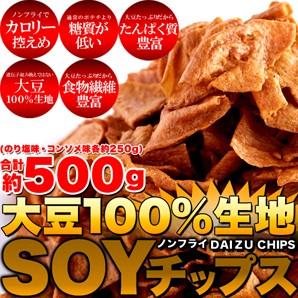 【送料無料】【同梱不可】大豆100%生地SOYチップス約500g(のり塩・コンソメ250g×2袋)(SM00010330)