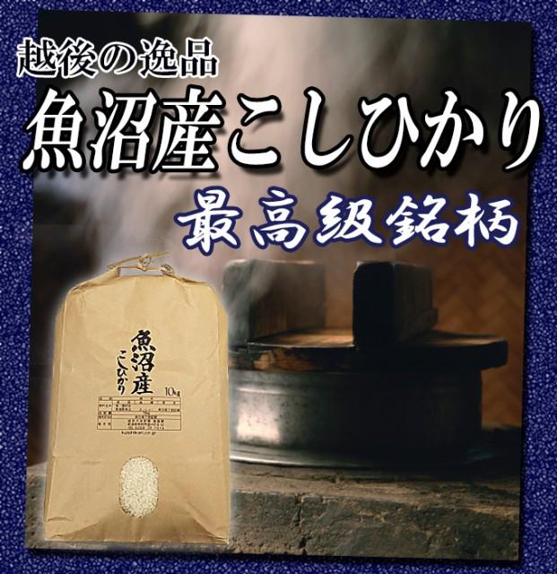 魚沼産コシヒカリ10kg 29年産 送料無料(一部地域のぞく)