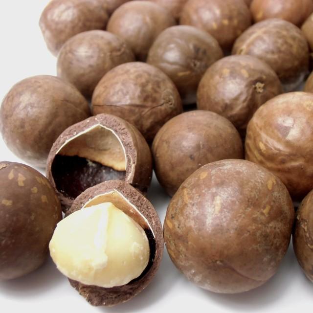 殻付きマカダミアナッツ (ロースト) 3kg (1kg×3個)