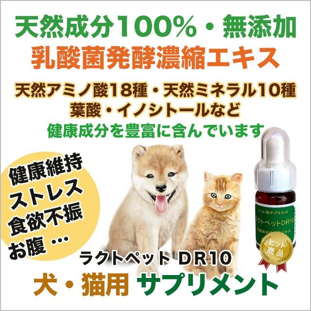 犬・猫用サプリメント ラクトペットDR10