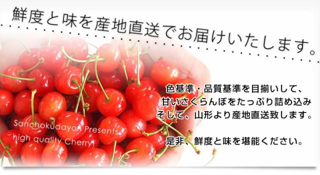 送料無料 山形県より産地直送 温室栽培さくらんぼ 佐藤錦 秀品 M以上 150g×2p 化粧箱入り 産直だより