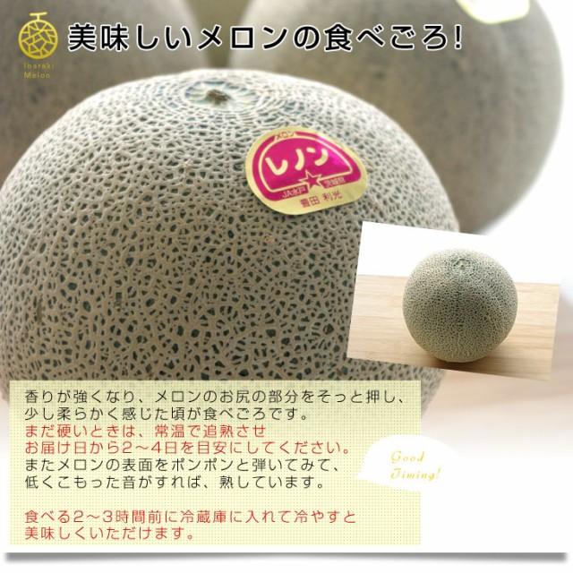 送料無料 茨城県より産地直送 JA水戸ひぬま レノンメロン(赤肉) 大玉の3Lサイズ 5キロ箱(4玉)  産直だより