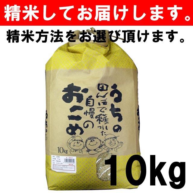 【平成29年度産】山形県産 ささにしき 一等玄米100% 10キロ