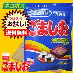 【全国送料無料】【ネコポス】【2袋】丸美屋 ごましお(業務用) 250g×2袋入