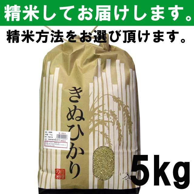 【平成29年度産】 滋賀県産きぬひかり 一等玄米100% 5キロ