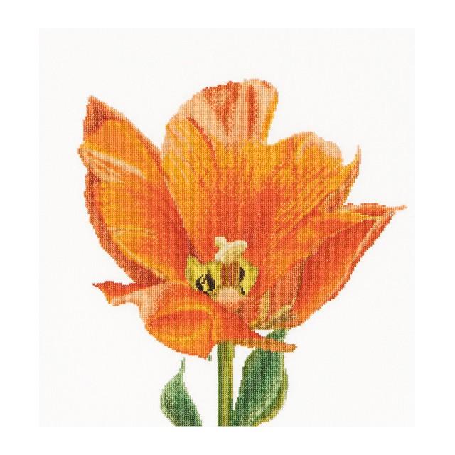 Thea Gouverneur クロスステッチ刺繍キットNo.523 「Orange Triumph tulip」(オレンジのトライアンフ チューリップ 花)  オランダ テア・