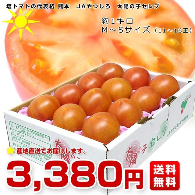 送料無料 熊本県より産地直送 JAやつしろ 太陽の子セレブ 約1キロ MからSサイズ (11から16玉) 産直だより