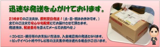 こなやの底力 北海道産 大豆粉 1kg   【全国宅配便 送料無料】 【大豆パウダー 豆乳粉 だいず粉】