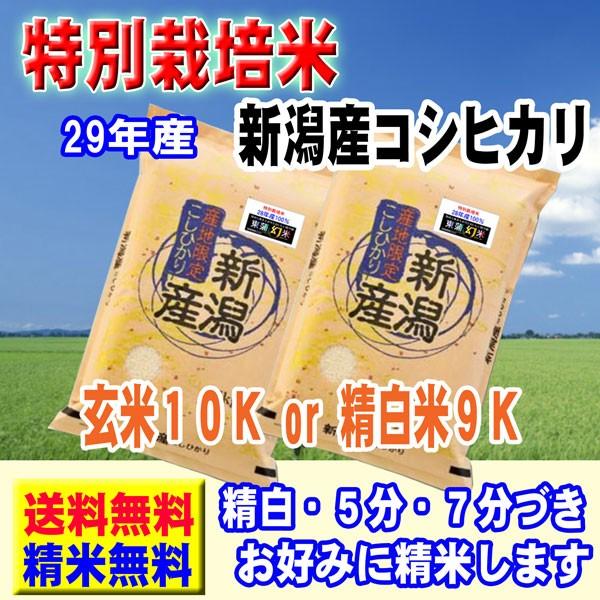 新潟県産 特別栽培米 コシヒカリ 10kg (5kg×2袋) 29年産 東蒲幻米 送料無料 玄米 白米 7分づき 5分づき 3分づき つきたて米