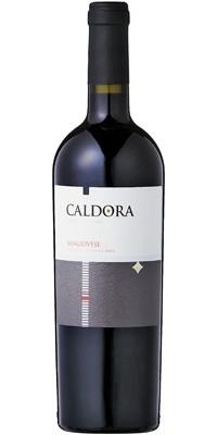 【送料無料】【ワイン12本セット】【福袋】カルドーラ サンジョヴェーゼ【赤】【750ml】【sale】
