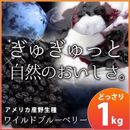 【メール便OK】【お試し】野生種ワイルドブルーベリー100g/健康食品 ヘルシーフード ダイエット