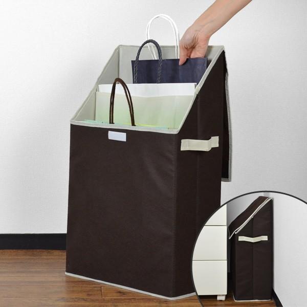 紙袋収納 ショッパーストレージボックス プラスワン
