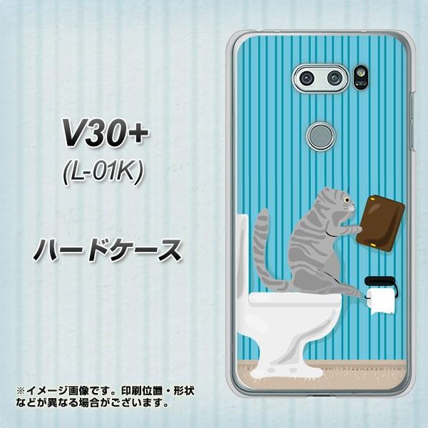 V30+ L-01K ハードケース / カバー【VA806 おやじネコ 素材クリア】(V30プラス L-01K/L01K用)