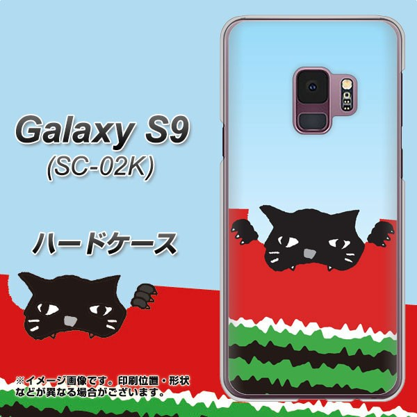 docomo Galaxy S9 SC-02K ハードケース / カバー【IA815 すいかをかじるネコ(大) 素材クリア】(ギャラクシー S9 SC-02K/SC02K用)