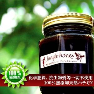 天然ハチミツ ジャングルハニー 250g 〔送料無料〕