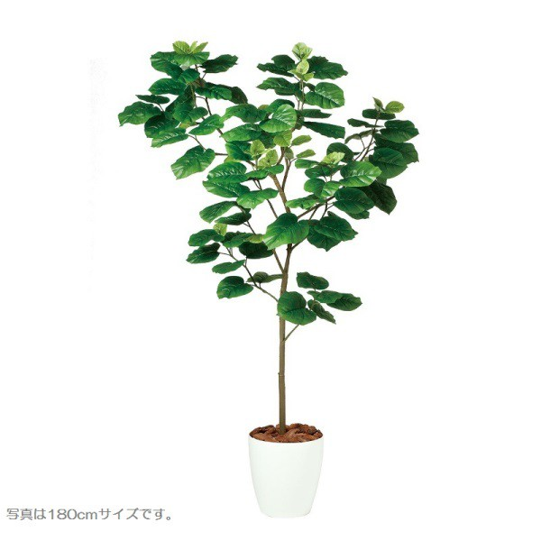 無料発送 人工観葉植物 ウンベラータFST150 高さ150cm dt99103 (き) インテリアグリーン 造花, 勝沼町 34f4d71a