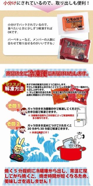 亀山社中 焼肉 バーベキューセット 9 はさみ 説明書付き