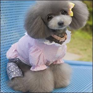 犬 ドッグウェア シャツ レース リボン 犬用服 ペット用品 春服 Pink ピンク