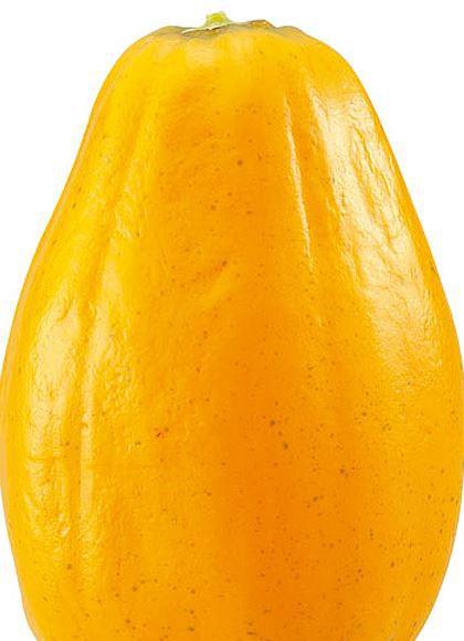 食品サンプル フルーツ 果物 130mm フレッシュパパイヤ [DIFV71007]【フェイク 商品 サンプル 作り物 レプリカ モチーフ】