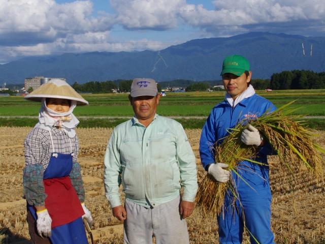 新潟米コシヒカリ 15kg(5kg×3袋)