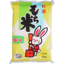 【送込】美味しいもち米 29年産山形県産ヒメノモチ 白米5kgx2袋 無洗米加工-袋再利用