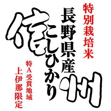 【送込】「A」受賞 29年産長野県伊那産コシヒカリ JA上伊那(特別栽培米) 玄米10kgx3袋 長期保存包装