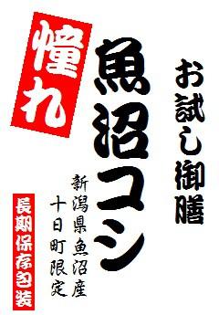【送込】【投函便】 憧れの 魚沼産コシヒカリ 900gパック(長期保存包装済み)