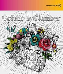 送料無料有/[CD]/MONKEY MAJIK/Colour by Number [CD+DVD]/AVCH-78072