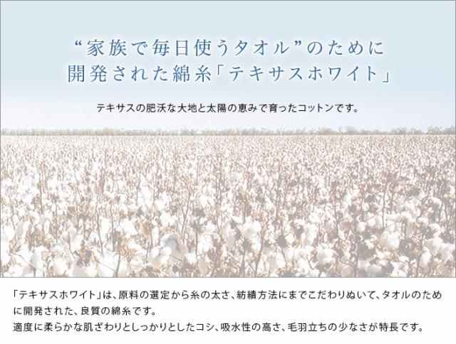 日本製 今治タオル バスタオル<Earth アース>