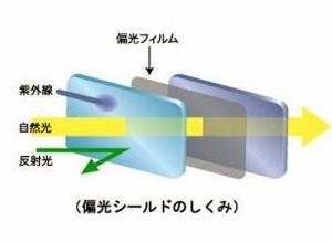 偏光カーバイザー Pola ShieldII ポラシールドツー PL-001