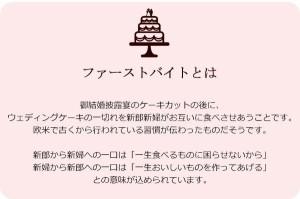 ファーストバイトに! ビッグウエディングスプーン 誓いのスプーン クリア 90cm レモン色リボン(支社倉庫発送品)