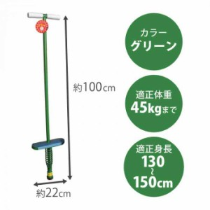 ホッピング 大 カラー:緑 バランススポーツ HP-100