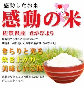 お米 10kg 安い 1等米 佐賀県 選べる精米 さがびより 10キロ 29年産 送料無料 北海道・沖縄・一部地域はキャンセル対応