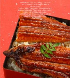 早割り ギフト gift うなぎ 鰻 海鮮 蒲焼き 国産 2017 送料無料 2人前〜3人前 九州産 きざみ鰻