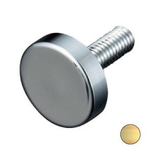 パイオニアテック 化粧ボルトEF フラットタイプ ゴールド ※取寄品 PT-E25F30-GO
