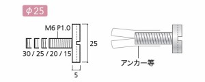 パイオニアテック 化粧ボルトEC クロスタイプ ゴールド ※取寄品 PT-E25C20-GO