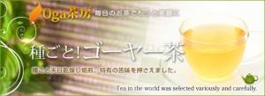 種ごと!ゴーヤー茶(30g)3150円以上送料無料 サプリメント 激安 ニガウリ 夏バテ 予防 ダイエット