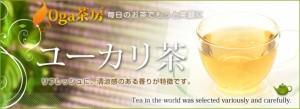 ■即納■ユーカリ茶(50g)3150円以上送料無料 ユーカリティー 健康茶 サプリメント 激安 お茶