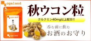 秋ウコン粒(約3ヶ月分)3150円以上送料無料 サプリメント 激安 うこん ダイエット ウッチン クルクミン 美容 健康食品 健康
