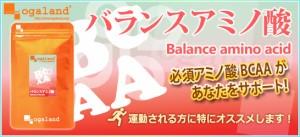 お徳用バランスアミノ酸(2個セット・約6ヶ月分)3150円以上送料無料 BCAA ダイエット 健康ケア 激安 サプリメント 必須アミノ酸 運動