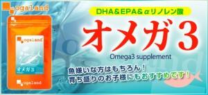 ★半年分セール★BIGオメガ3-DHA&EPA&α-リノレン酸サプリ(半年分)送料無料 青魚 サプリメント エゴマ油