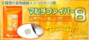 お徳用マルチファイバー8(2個セット・約6ヶ月分)3150円以上送料無料 サプリメント 健康 食物繊維 オリゴ糖 野菜不足 激安