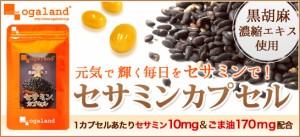 ■即納■お徳用セサミンカプセル(約3ヶ月分)3150円以上送料無料 サプリメント 黒ゴマ 健康 胡麻麦茶 胡麻 ごま油 ゴマ