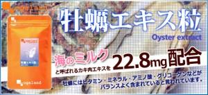 ■即納■お徳用牡蠣エキス粒(約3ヶ月分)3150円以上送料無料 ミネラル たんぱく質 ビタミン 健康ケア 激安 サプリメント 亜鉛