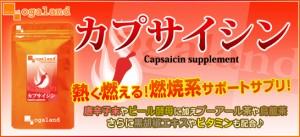 カプサイシン(約1ヶ月分)3150円以上送料無料 特価  サプリメント 唐辛子 ビタミンC 運動 激安 diet 燃焼ダイエット 気になる寒さ 健康