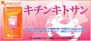 キチンキトサン(約1ヶ月分)3150円以上送料無料 ダイエット 糖分 サプリメント 激安 油 diet 激安 油分 脂質 動物性食物繊維