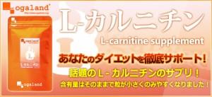 L-カルニチン(約1ヶ月分)3150円以上送料無料 健康サポート 激安 ダイエット サプリメント 運動系ダイエット カルニチン 糖質 運動