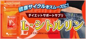 お徳用L-シトルリン(約3ヶ月分)3150円以上送料無料 ダイエット 美容サポート サプリメント ダイエット スリム サプリ