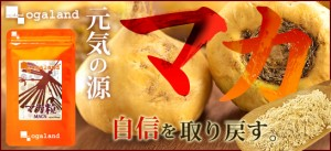 マカ粒(約1ヶ月分)3150円以上送料無料 マカエキス サプリメント 元気 疲れ 健康食品 スタミナ サプリ